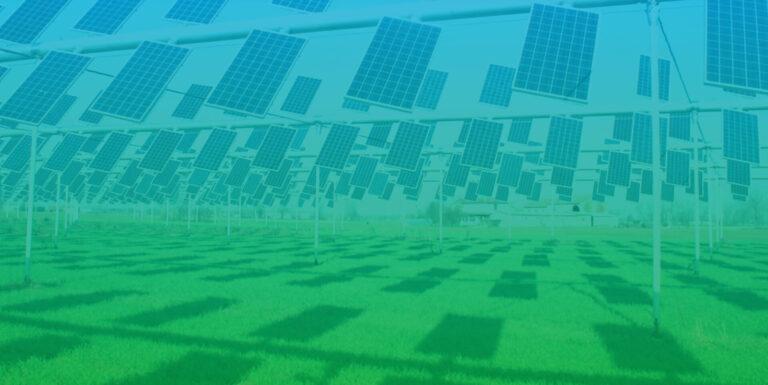 agrivoltaico_sostenibile_cover_img_ed_03